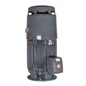 HT25P2BLF, 25HP, 1800 RPM, 230/460V, 284TPA, 3PH, TEFC, Vertical Holloshaft