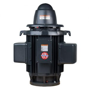 HS5C2KLE, 5HP, 1800 RPM, 230V, 254UP, Single Phase, WPI, Vertical Holloshaft